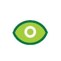 Vision1 - DITC